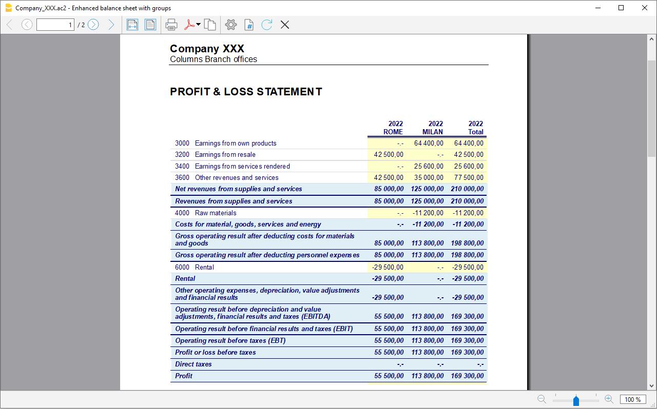 bilancio per segmenti