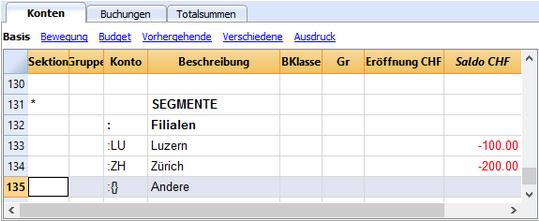 Bilanzbericht mit Segmente